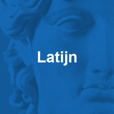 vak Latijn 400x400 blauw met beeld